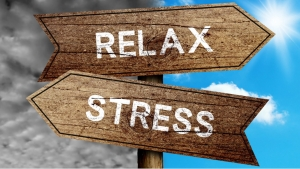 """HANDLING THE STRESS"" by Aastha Mahendru"